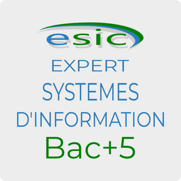 tp-expert-systemes-information-securite-esic